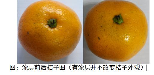 可食用复合果蔬保鲜涂层