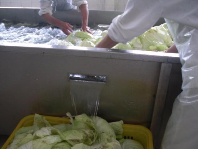 脱水蔬菜加工