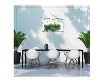 创意植物相框-植物挂框-植物壁挂-植物墙-微型植物墙-创意植物造景