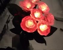 一种可以发光的冰玫瑰