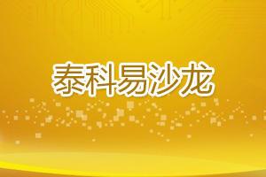 2017首期泰科易服务沙龙——智能制造专场