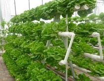 一种农业生产技术中无土栽培种植专用的器具