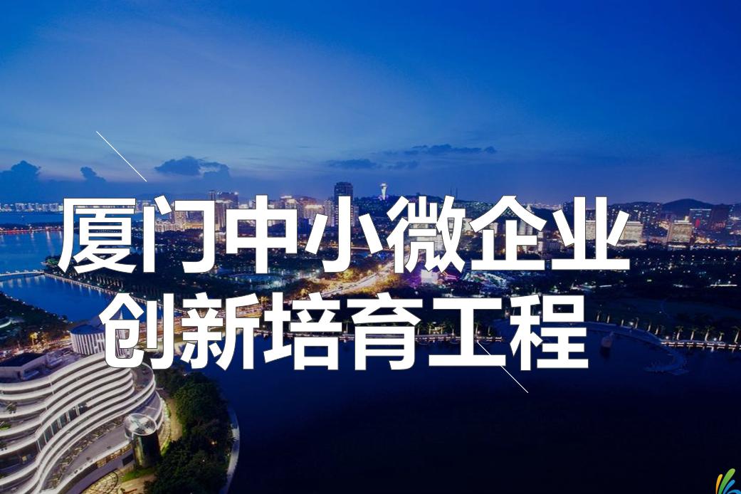 厦门中小微企业创新培育工程——企业家沙龙活动(第十期)