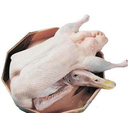 深圳批发白条鸭 冷冻白条鸭批发厂家 冷冻鸭爪批发