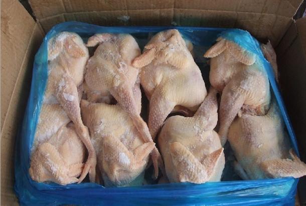 冷冻白条鸡批发 冷冻三黄鸡批发 冷冻土鸡批发