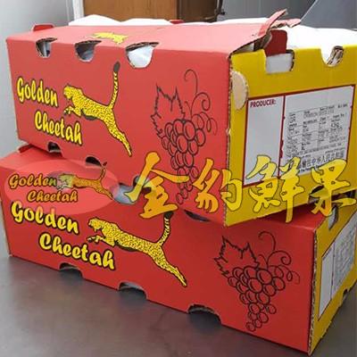 南非进口金豹无籽红提 广州进口水果批发市场货源