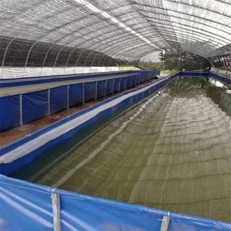 加厚耐磨帆布鱼池耐拉无气味水池加工定做养殖水产鱼池水池报价