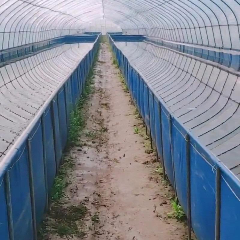 防漏水篷布鱼池 pvc帆布水池图片可移动帆布鱼池绿色储水池厂家