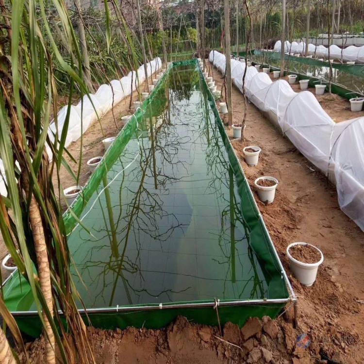 无气味无毒养殖鱼池 环保防漏水水池 耐磨无公害帆布鱼池
