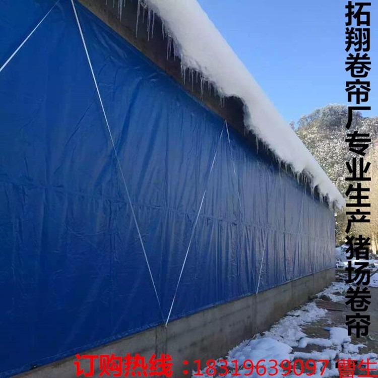 猪圈卷帘布pvc防水布养殖场卷帘布防寒保暖窗帘布