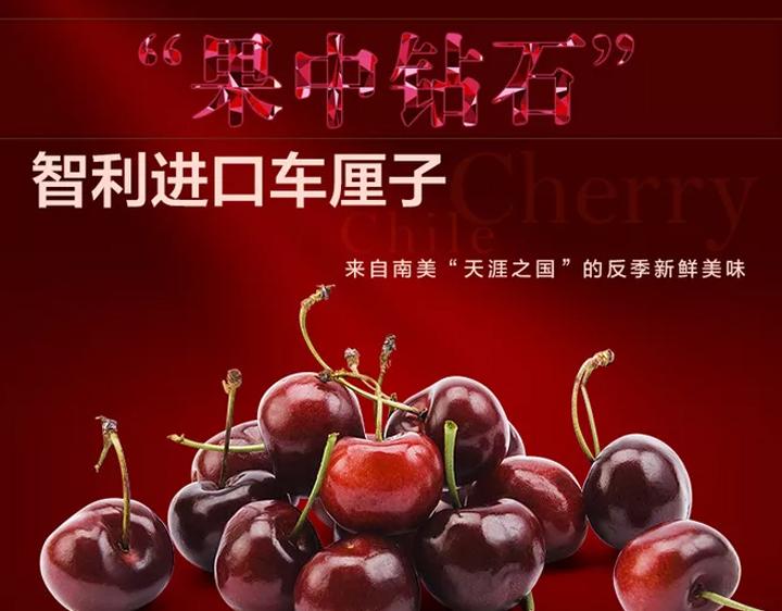 智利车厘子进口新鲜水果当季孕妇水果预售批发供应