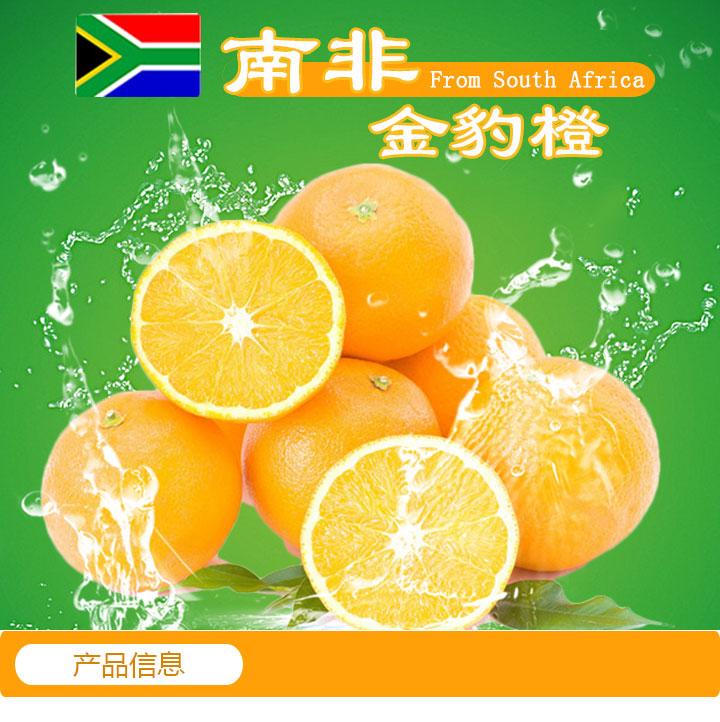 鲜榨果汁饮品酸甜薄皮南非进口酸橙鲜果批发供应