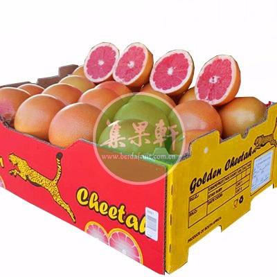 红宝石西柚34斤南非金豹牌 榨汁专用鲜果进口货源