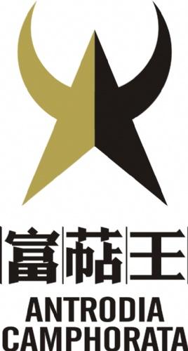 牛樟芝富萜王 健康首选